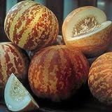ungarische kleine Tiggermelone, extra süsses Aroma, 90 Tage, 10 Samen