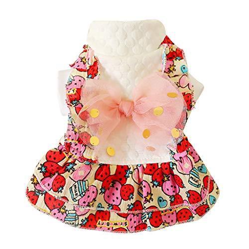 Haustier Rock Star Kostüm - Haustierkleidung Hund Kleidung Hundekostüm Prinzessin Kleid Hawkimin Herbst und Winter Gedrucktes Erdbeerdruck Tutu Weste Rock für Kleine Hunde Katze Mädchen Bekleidung