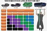 Resistance Bands für Fitness Training / Klimmzugbänder zum Trainieren für Anfänger und Profis / Widerstandsbänder für CrossFit und Yoga / Hochwertige Tragetasche und E-Guide sind inklusive - 5