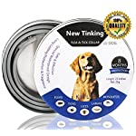 flea and tick collar for dogs, waterproof dog anti flea collar, natural & safe Flea and Tick Collar for Dogs, Waterproof Dog Anti Flea Collar, Natural & Safe 51OwNSe0 2BiL
