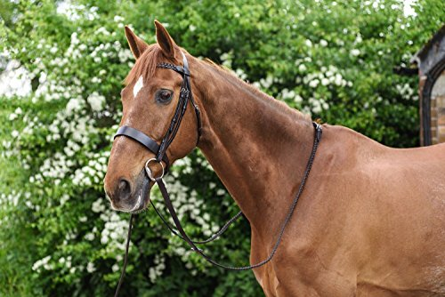 White Horse Equestrian Besler Ri...