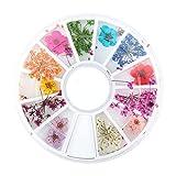 Decoración de Uñas 2pcs 12 Tipos de Flores Secas Natural Conjunto de Flores Secas Real Manicura...