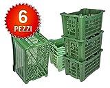 Cassetta Agricolo Ortofrutta con Fondo chiuso cm 53x35, altezza 30, capacita' LT 40, Verde