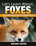 Foxes (Let's Learn About)
