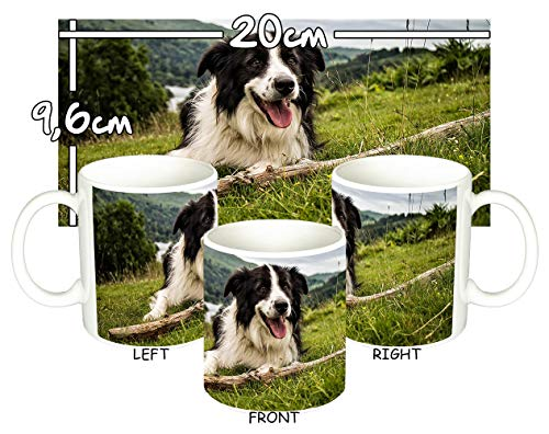 MasTazas Border Collie A Tasse Mug