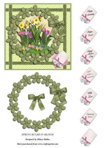 Feuille A4 pour confection de carte de vœux - Spring Bulbs In Bloom par Hilary Hallas
