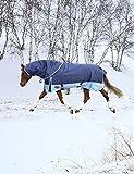 iCREAT Pferdedecke mit Abnehmbarem Halsteil Wasserdichte Weidedecke mit 680 Danier und 300g Füllung Winterdecke Pferd, Dunkelblau, 135