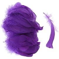 F Fityle Sachet DE 200 Plumes 6-10cm - Violet
