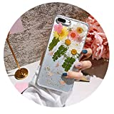 Suitable for iphoneXs Max Real flower dripping dry flower mobile phone shell For Iphone 6 6S 7 8 Plus Protect Case,4,For iPhone 6