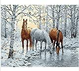 WGXCC DIY Digital Ölgemälde Auf Leinwand Handarbeit Geschenk Rahmenlose Handarbeit Schnee Pferd Bilder Malen Nach Zahlen 40X50 cm