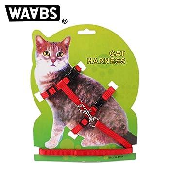 WAABS Harnais pour Chat - Collier Ajustable en Nylon avec Laisse Offerte pour Chat (Rouge)