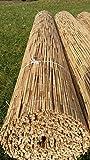 Schilfrohrmatten Schilfmatte 180 hoch x 600cm breit, Sichtschutz Matten Windschutzmatten Sichtschutz Balkon Terasse Garten Sicht Schutz Sonnenschutz Windschutz Sichtschutzmatten Lärmschutzmatten Staubschutzmatten Naturmatten