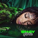 Songtexte von Shay - Antidote