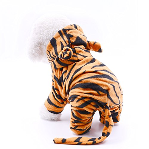 - Tiger Dog Kostüm