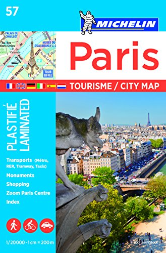 Plan Paris (Plastifie) Michelin