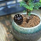 Kicode Kunststoff New Bonsai-Werkzeug Dünger Abdeckung Korb Box Dome-Fall Weiche Pflanze Bug Fall-Schwarz tragbar