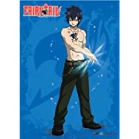 De pared Scroll–Fairy Tail–nuevo gris hielo que Anime arte oficial ge60549