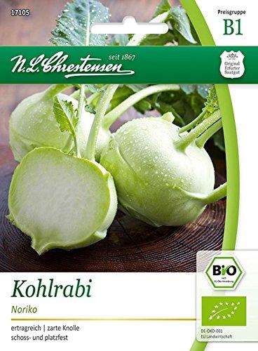 Bio Kohlrabi 'Noriko (weiß)' Saatgut Samen (ertragreich, zarte Knolle)
