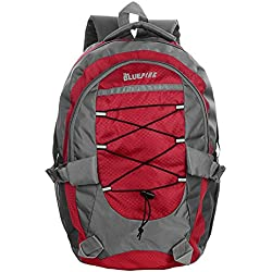 Dussledorf Tom Red Casual Backpack With Adjustable Strap And Laptop Compartment (TOM-03)
