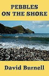 Pebbles on the Shore (Perils and Predicaments Book 1)