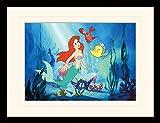 1art1 102009 Arielle Die Meerjungfrau - Ariel Gerahmtes Poster Für Fans und Sammler 40 x 30 cm