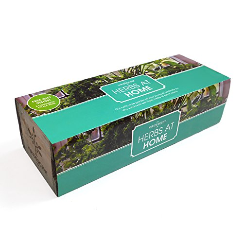 Viridescent Indoor Herb Garden Kit - Kitchen Wooden Windowsill Planter Box with Herb Seeds. Best Xmas Gift Idea!