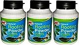 Doff Portland 3 x Poudre d'hormones d'enracinement 75 g & de boutures de plantoir