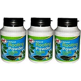 Doff – Confezione da 3 polveri naturali per radici di piante e tagli, da 75 g.