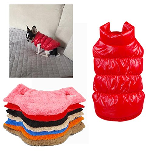 Rantow Herbst Winter Haustier Hund Katze kleidet warmen unten Mantel, 7 Farben klassisches Haustier Outwear Daunenjacke für Teddy, Yorkshire Terrier, Chihuahua, Pommern (M, Red) (Kleidung Unten)