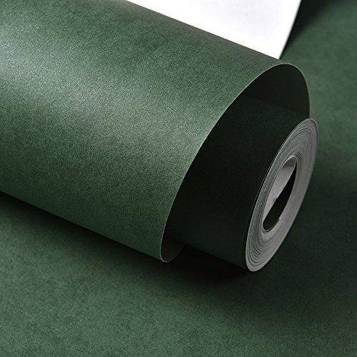 Carta da parati della carta della banda della decorazione della carta della copertura murale minimalista moderna per verde scuro 53x1000cm - Braune Drache-shirt