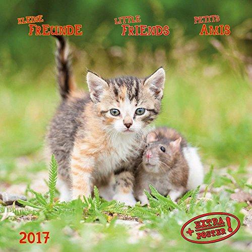Kleine Freunde - Little Friends - Petits Amis 2017 Artwork