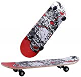 #4: Skate Board Size 24