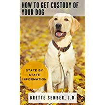 How to Get Custody of Your Dog