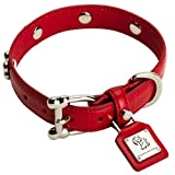 Chrom Knochen Forever Knochen Signature Pet Halsband, medium, rot