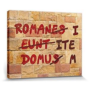 1art1 Das Leben des Brian - Römische Mauer, Romani ITE Domum Poster Leinwandbild Auf Keilrahmen 50 x 40 cm