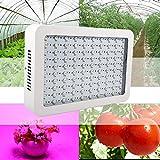1000W Hydro LED Luz de Crecimiento de Espectro Completo para Plantas Medicinales Veg & Bloom Fruit
