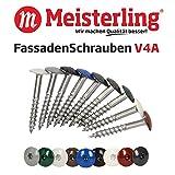 Meisterling FassadenSchrauben 5,5 x 35 mm, V4a Edelstahl, mit Flachkopf