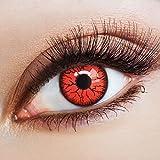 aricona Kontaktlinsen Farblinsen – deckend rote, farbige Kontaktlinsen ohne Stärke, bunte Vampir Kostüm Augenlinsen, Halloween Horror Jahreslinsen