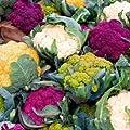 """Blumenkohl 20 samen ''Regenbogen-Mix"""" die Spaß zu wachsen und lecker zu essen (Cauliflower Rainbow)"""