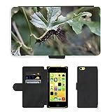 Just carcasa caliente estilo ranura de tarjeta de teléfono celular Funda de piel sintética//m00139111Caterpillar mariposa oruga//Apple iPhone 5C