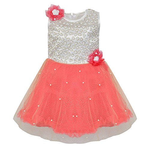 e8a013d41 Wish Karo Baby Girls Party Wear Frock Dress DN (fe2215nw5-6 Years) ...