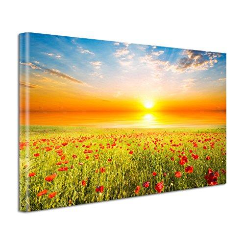 Leinwand Bild edel Blumen Sonnenuntergang im Mohnfeld Größe 60 x 40 cm