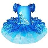 Tiaobug Justaucorps Imprimé Soulier de Verre de Cendrillon — Danse/Gymnastique/Performance (XL, Bleu)...