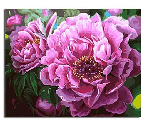 Delilah Blumen (Artshdow Nahaufnahme-Rosa Delilah-Blumen-Porträtmalerei Durch Kit Der Zahlen-Wand-Kunst-DIY)