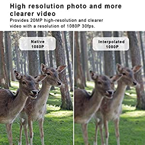 """WiMiUS Wildlife Trail Camera, 1080P 20MP 0.2s Trigger Speed Motion Activated Infrared Night Vision 70ft / 20m IP54 Waterproof with 2.4"""" LCD Outdoor Nature Game Hunting Camera No Glow for Garden Home"""