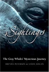 Sightings: The Gray Whales' Mysterious Journey by Linda Hogan (2003-07-01)