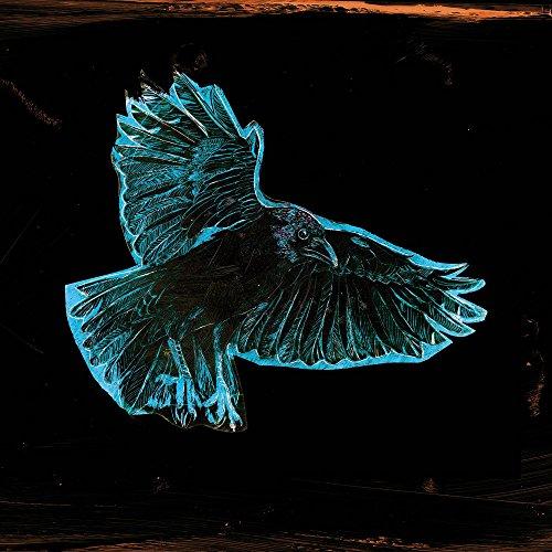 Apple iPhone 6 Housse Étui Silicone Coque Protection Corbeau Oiseau Nuit Étui en cuir marron