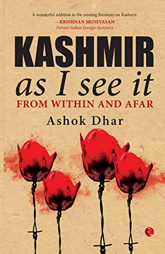 Kashmir As I See It: From within and afar