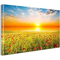 Leinwandbild 120x80cm auf Keilrahmen Blume,Sommer,Wiese,Landschaft,farbig,frei