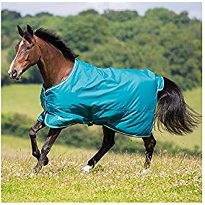 Shires Tempest Original 50g Combo Turnout Rug 6ft3 Green